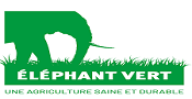 elephantvert